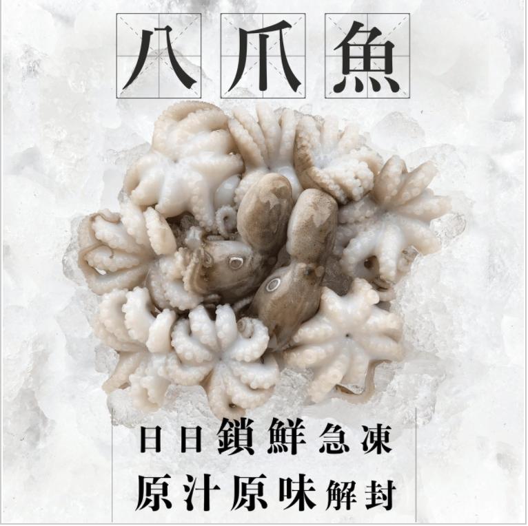 漁家 - 【魚欄直送】八爪魚仔 400g+ (8-10隻) (急凍)