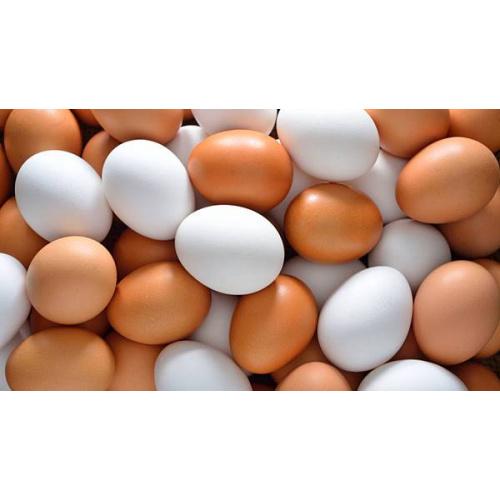 中國一級雞蛋 (10個)