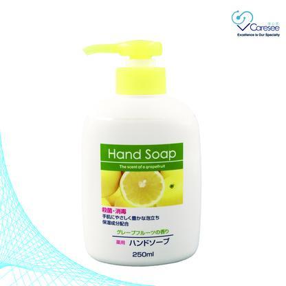 日本第一石鹼殺菌消毒洗手液 (250ML)