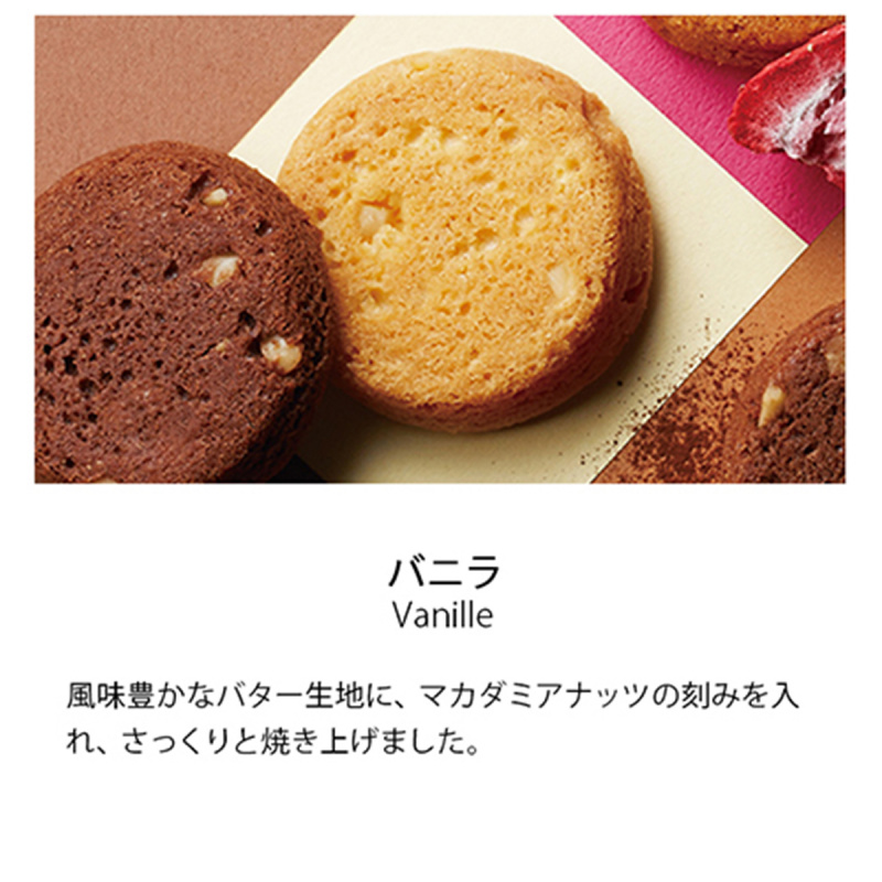 日本 銀座Boul' Mich 法式雜錦 松露蛋糕雙層禮盒 (1盒2層10件)【市集世界 - 日本市集】