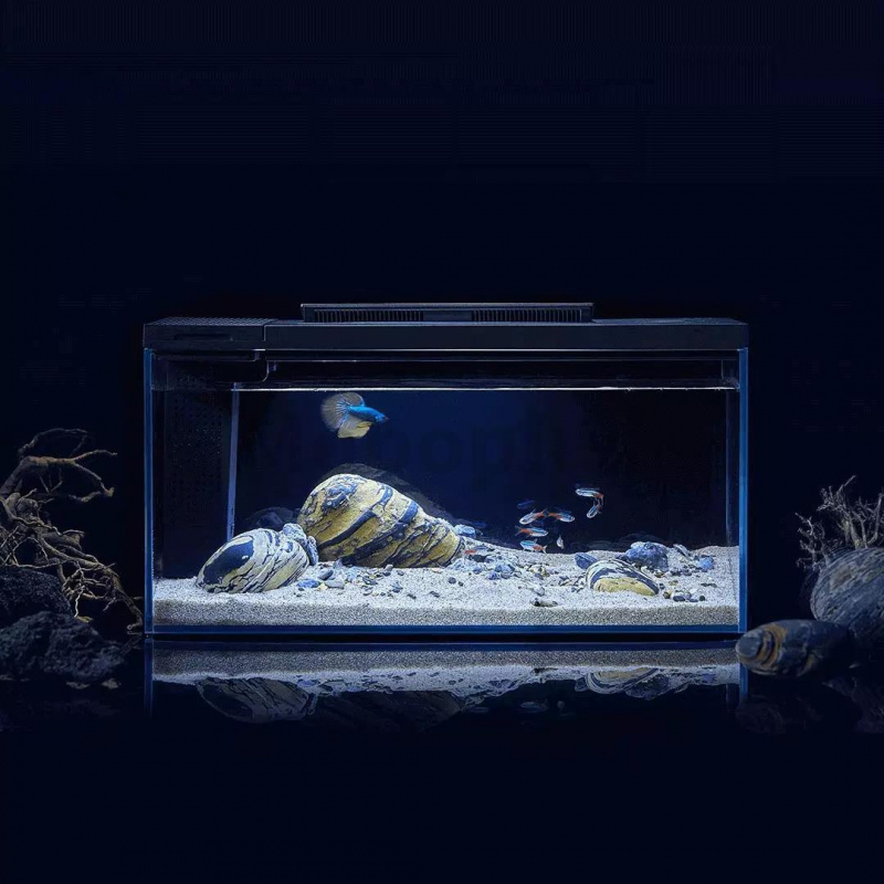 小米 PETKIT起源紀智能魚缸 E410  3-5天發出