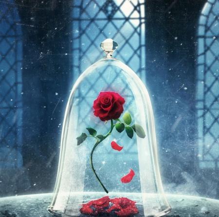 💝永生花💝 美女與野獸紅玫瑰🌹Le Petit Prince - The red rose 情人節花 22CM特大版 Preserved Flowers