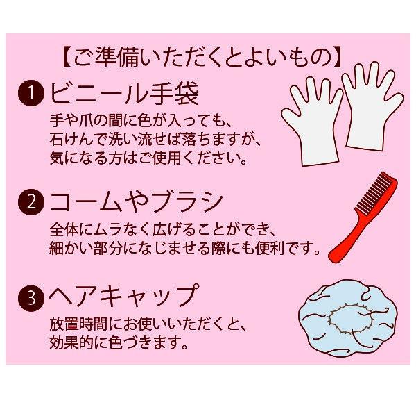 50惠 [日本進口版] 天然海藻染髮護髮膏 (深棕色)
