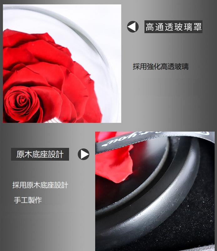 LE PETIT PRINCE - The Red Rose 小王子的永恆紅玫瑰 [22cm]