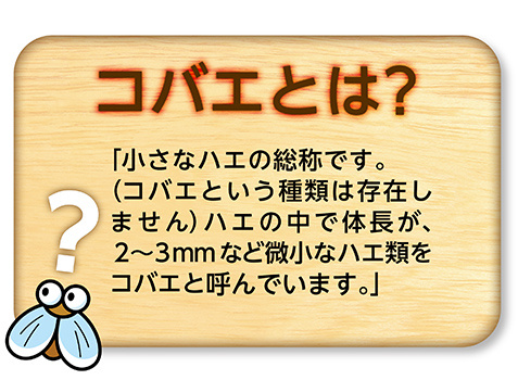 日本Earth Chemical誘引捕獲吸蚊啫喱2個裝