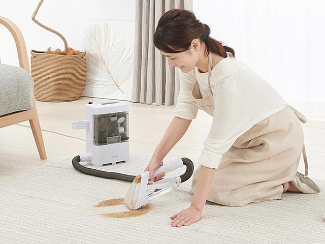 IRIS OHYAMA RNS-300 布藝清潔機