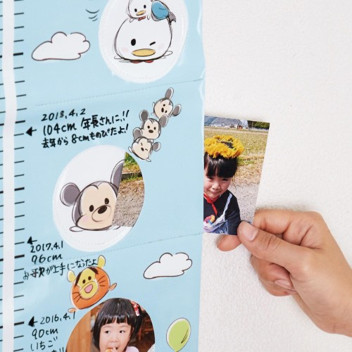 Disney Tsumtsum 卡通可換相片度高掛毯 [2色]