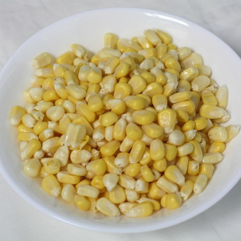 美國或其他地區 粟米粒 UDS100 每包(約1KG)