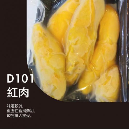 馬來西亞 D101 紅肉榴槤