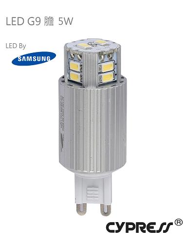 Samsung 芯片 G9 LED膽 [2款]