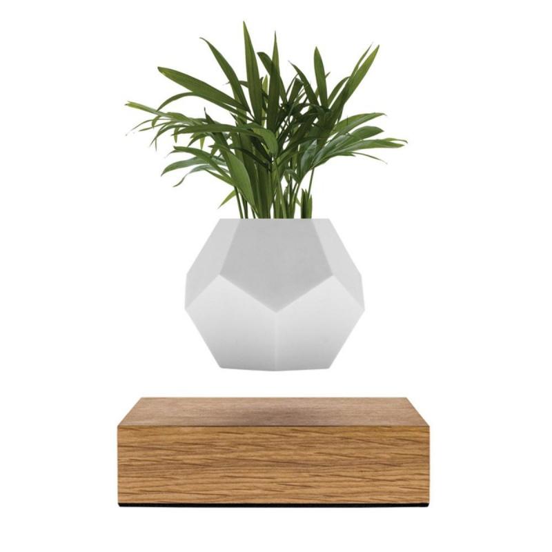 LYFE 懸浮植物盆