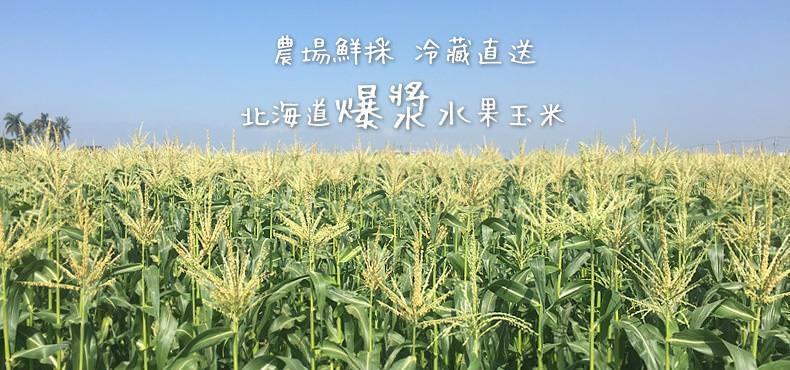 台灣新鮮採摘直送 - 嚴選北海道爆漿水果玉米(3kg)