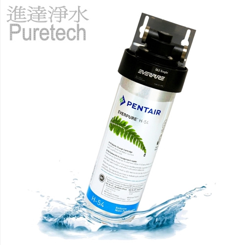 Everpure H-54 濾水器包上門送貨連標準安裝 (Filtration System with on-site installation)