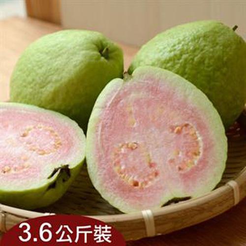 台灣新鮮採摘直送 - 旗山紅心芭樂(3.6公斤)