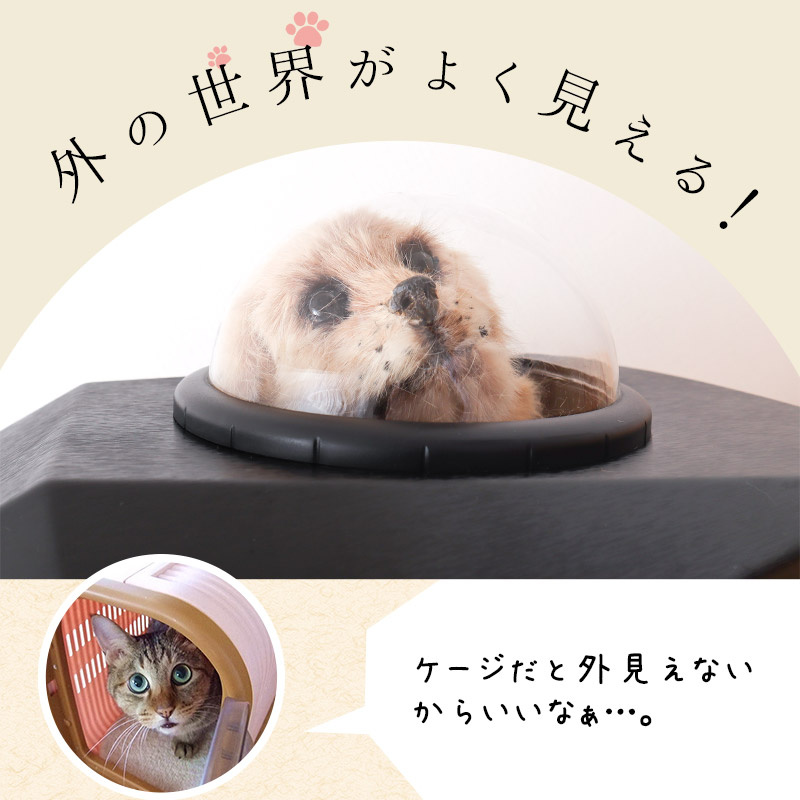 Petbac 寵物太空艙背囊 [黑色]