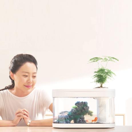 小米有品 畫法幾何招財兩棲生態魚缸 標準版/ Pro版