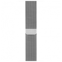 Apple Watch band - 42 毫米不鏽鋼織手環 42mm Milanese Loop