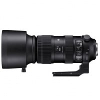 Sigma 60-600mm F4.5-6.3 DG OS HSM | S